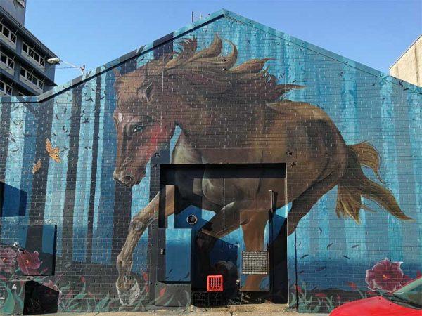 Darwin Street Art - Pferd