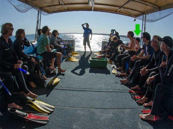 Erklärung zur Whaleshark-Tour an Bord