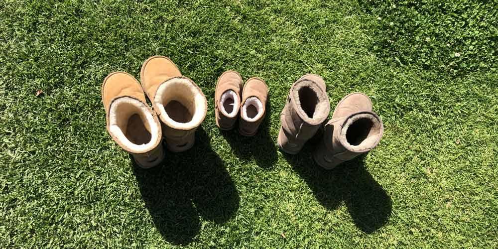 Schuhe einer Familie auf dem Rasen