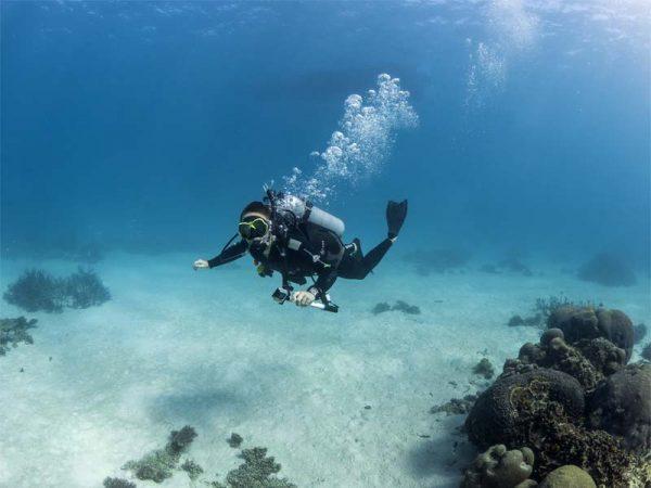 Tauchen an der Coral Coast, Australien