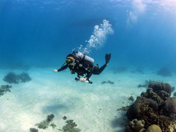 Tauchen an der Coral Coast, Western Australia