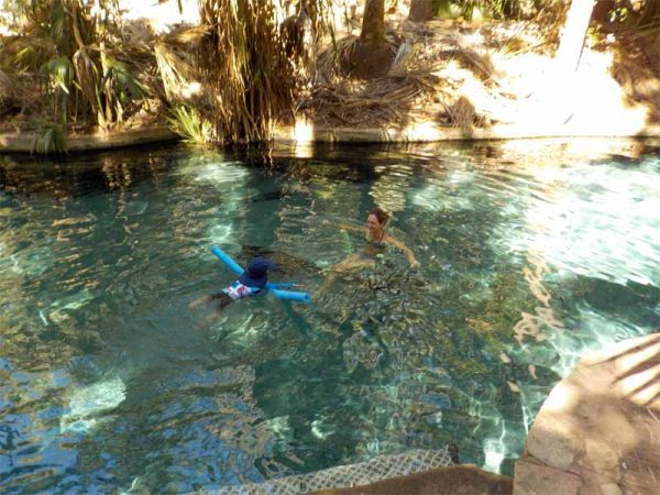 Thermal Pool in Mataranka