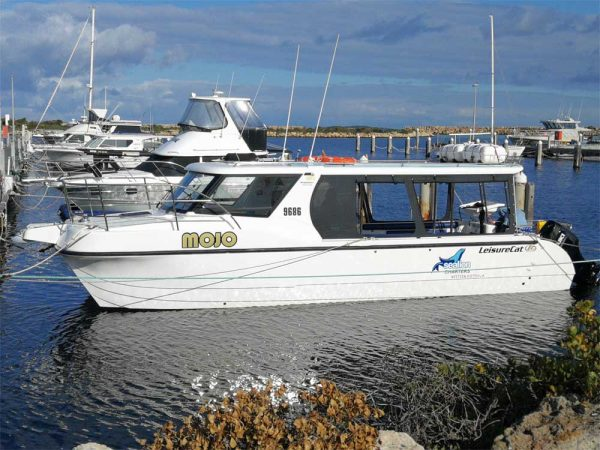 Das Boot der Jurien Bay Sea Lion Charter
