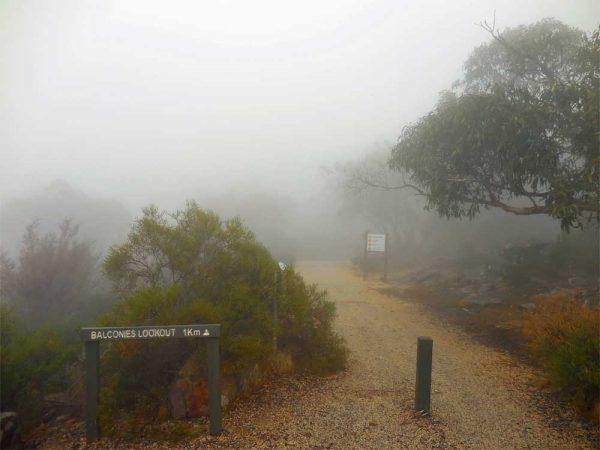 Nebel in den Grampians, Victoria Australien