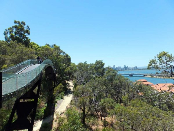 Perth Kings Park - Tree Top Walk