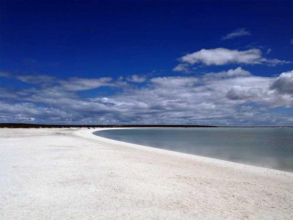 Shell Beach, Francois Peron National Park Western Australia, Australien