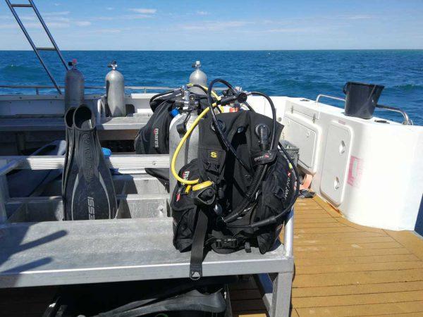 Tauchen am Ningaloo Reef