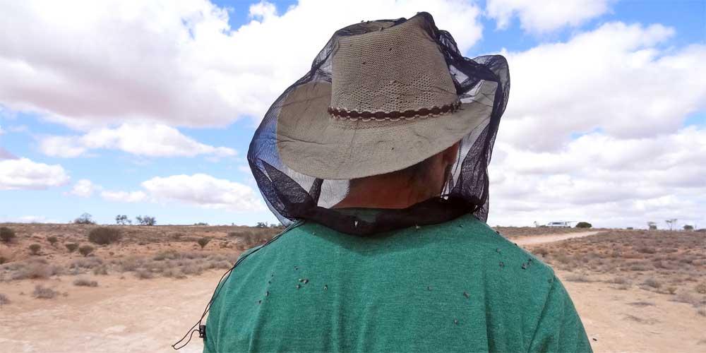 Headnet fürs Outback Australien